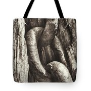 Links To Copper Harbor's Past Tote Bag