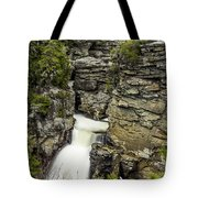 Linville Falls The Upper View Tote Bag