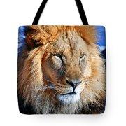 Lion 09 Tote Bag