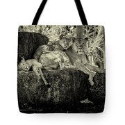 Lion And Her Cubs Tote Bag