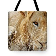 Lion Considering Irish Tartare Tote Bag