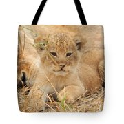 Lion Cub With Mom Watching Tote Bag