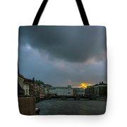 Lion Dock  Tote Bag