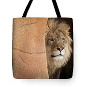 Lion Emerging    Captive Tote Bag