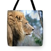 Lion In Thought Tote Bag