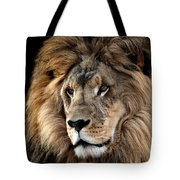 Lion King Of The Jungle 2 Tote Bag by James Sage