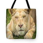 Lion Nature Wear Tote Bag