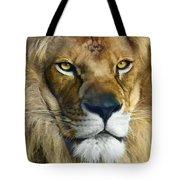 Lion Of Judah II Tote Bag