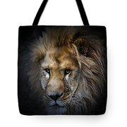 Lion Portraits 0055 Tote Bag