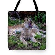 Lion Roar/2 Tote Bag