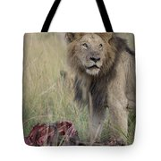 Lion With Kill Tote Bag