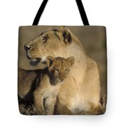 Lioness And Her Cub  Tote Bag
