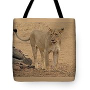 Lioness At The Kill Tote Bag