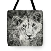 Lioness Portrait Tote Bag