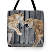 Lioness's Playing 1 Tote Bag