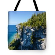 Lions Head Limestone Cliffs Tote Bag