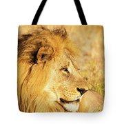 Lions Head Tote Bag