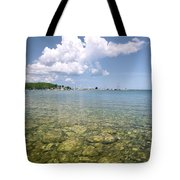 Lion's Head - Summer Afternoon On The Dock Tote Bag