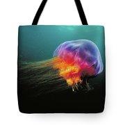 Lions Mane Cyanea Capillata Jellyfish Tote Bag
