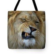 Lions Wink Tote Bag