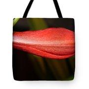 Lipstick Red Amarillis Tote Bag