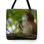 Listen To My Song Tote Bag