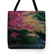 Litha Park Ashland Oregon Tote Bag