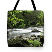 Litltle River 1 Tote Bag