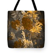 Litthe Creatuions Tote Bag