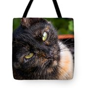 Little Alley Tote Bag