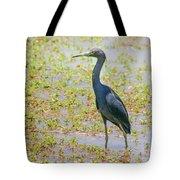 Little Blue Heron In Weeds Tote Bag