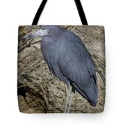 Little Blue In Ormond Tote Bag