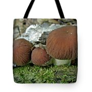 Little Brown Mushrooms In Moss Tote Bag