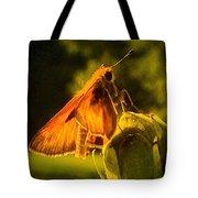Little Brown Skipper Butterfly Tote Bag