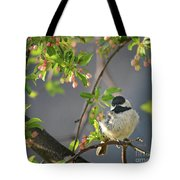 Little Chickadee In The Pink Tote Bag