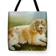 Little Cookie Tote Bag