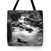 Little Creek 3 Bw Tote Bag