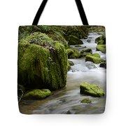 Little Creek 5 Tote Bag