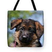 Little Darling Tote Bag