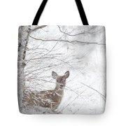Little Doe In Snow Tote Bag