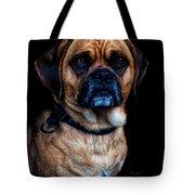 Little Dog Big Heart Tote Bag