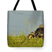 Little Duck's Moving Day Tote Bag