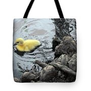 Little Ducky 2 Tote Bag by Angelina Vick
