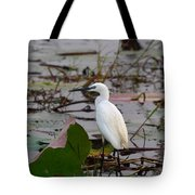 Little Egret 2 Tote Bag