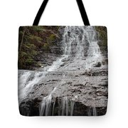 Little Falls Two  Tote Bag