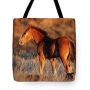 Little Filly Tote Bag