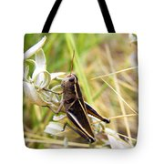 Little Grasshopper 2 Tote Bag