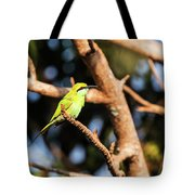 Little Green Bee Eater On A Branch Tote Bag