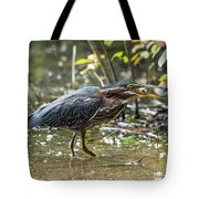 Little Green Heron With Fish Tote Bag