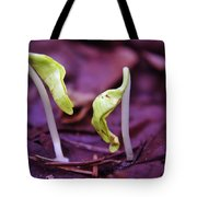 Little Green Sprouts  Tote Bag